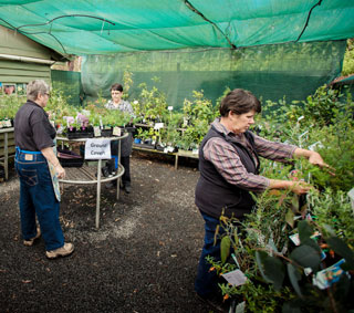 Peacehaven Botanical Park nursery volunteers