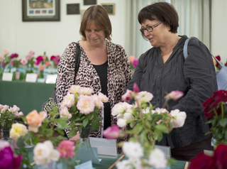 Ladies looking at roses in hall