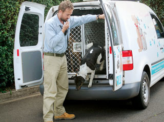 Animal management dog getting out of vehicle