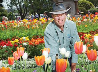 Gardner Matt with tulips